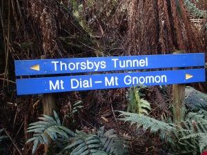 Ferndene State Reserve, Ferndene Tasmania